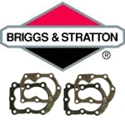 Picture for category Briggs & Stratton teste cilindro