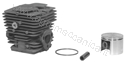 Immagine di Kit cilindro pistone GGP Alpina  360358