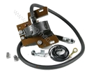 Picture of Ricambio Briggs Stratton 330113