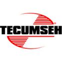 Immagine per la categoria Tecumseh