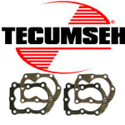 Picture for category Tecumseh Head cylinders
