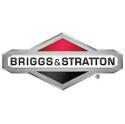 Immagine per fornitore BRIGGS AND STRATTON